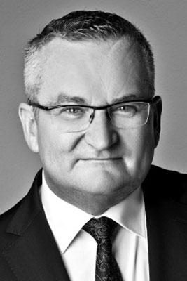 Prof. Dr. Werner Fees