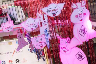 Dekoration zum Jahr des Schweins